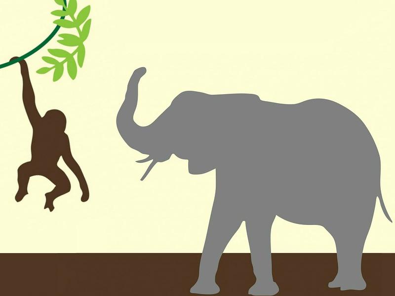 Affe und Elefant
