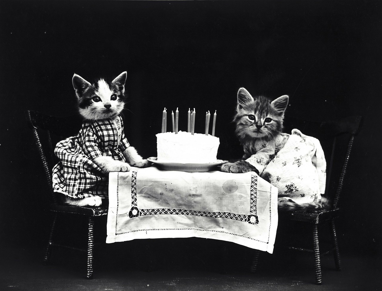 Geburtstag Gruber